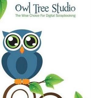 Owl Tree Studio